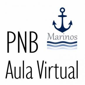 Aula Virtual PNB