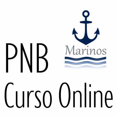 Curso online PNB
