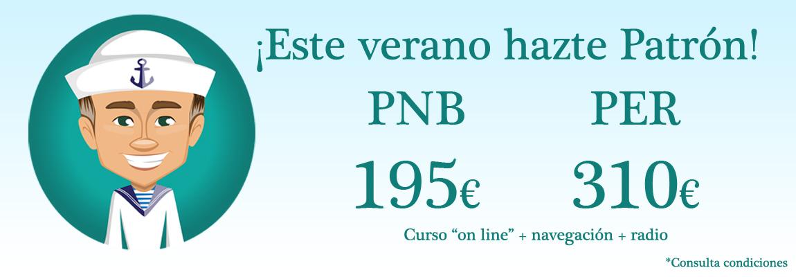 pnb per online