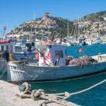 Patrón Costero Polivalente: convalidación del Patrón Portuario