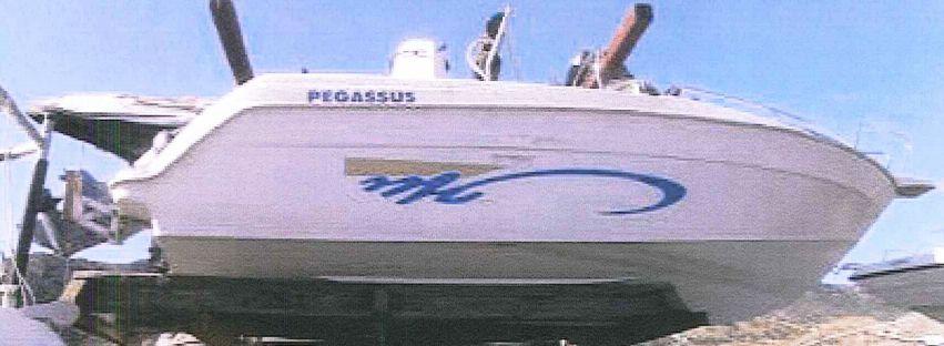 Subasta embarcación Haz Pegassus