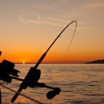 5 aplicaciones de pesca deportiva en el mar para mejorar tu técnica