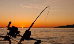 aplicaciones de pesca deportiva