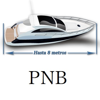 PNB online (solo Aula Virtual)