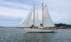 profesionalización de la náutica de recreo